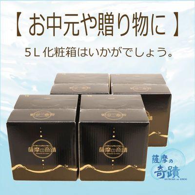 5L化粧箱