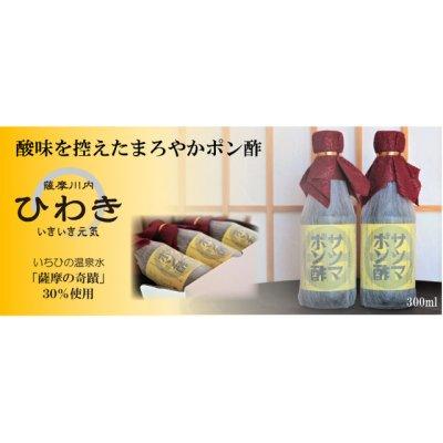 画像1: 出汁たっぷり、甘口【サツマポン酢』300ml×2本